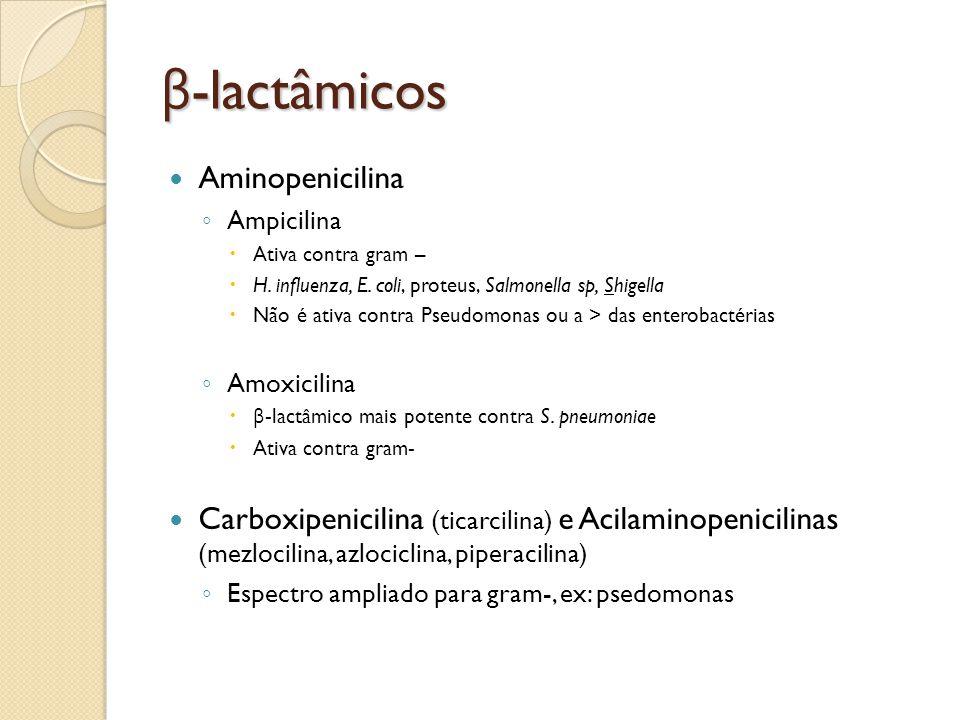β-lactâmicos Aminopenicilina