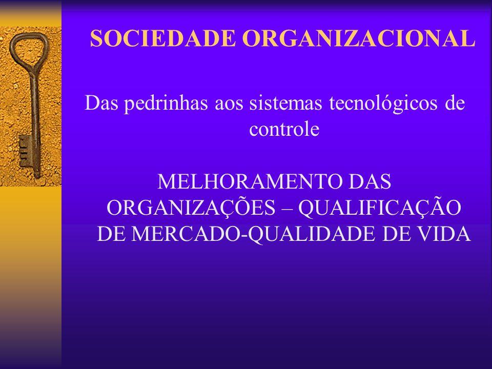 SOCIEDADE ORGANIZACIONAL