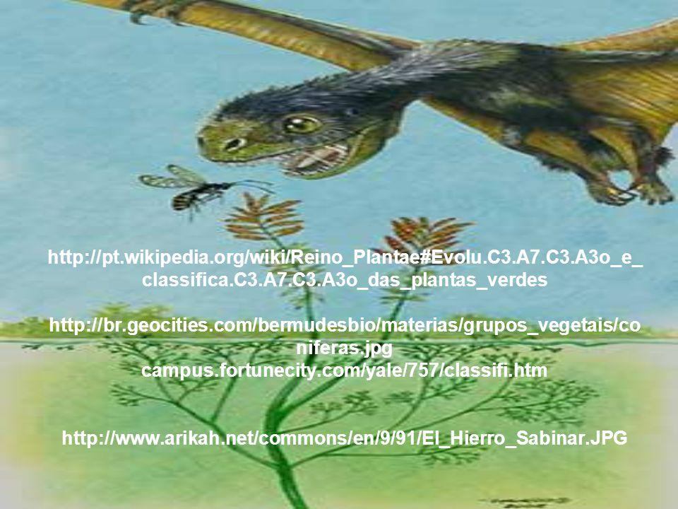 http://pt. wikipedia. org/wiki/Reino_Plantae#Evolu. C3. A7. C3