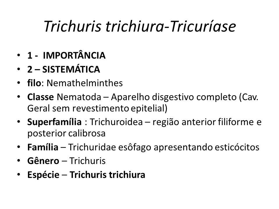 Trichuris trichiura-Tricuríase