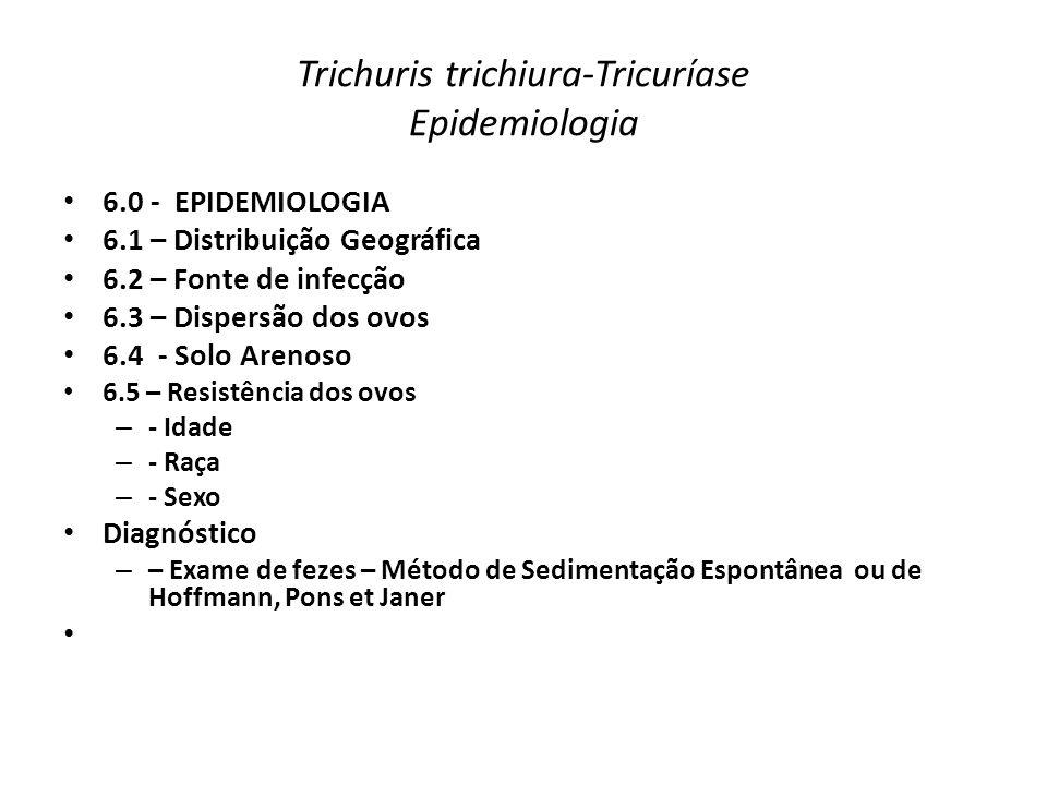 Trichuris trichiura-Tricuríase Epidemiologia