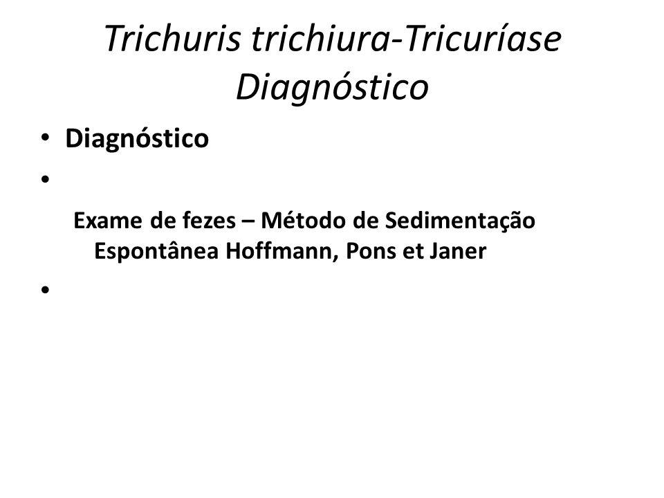 Trichuris trichiura-Tricuríase Diagnóstico