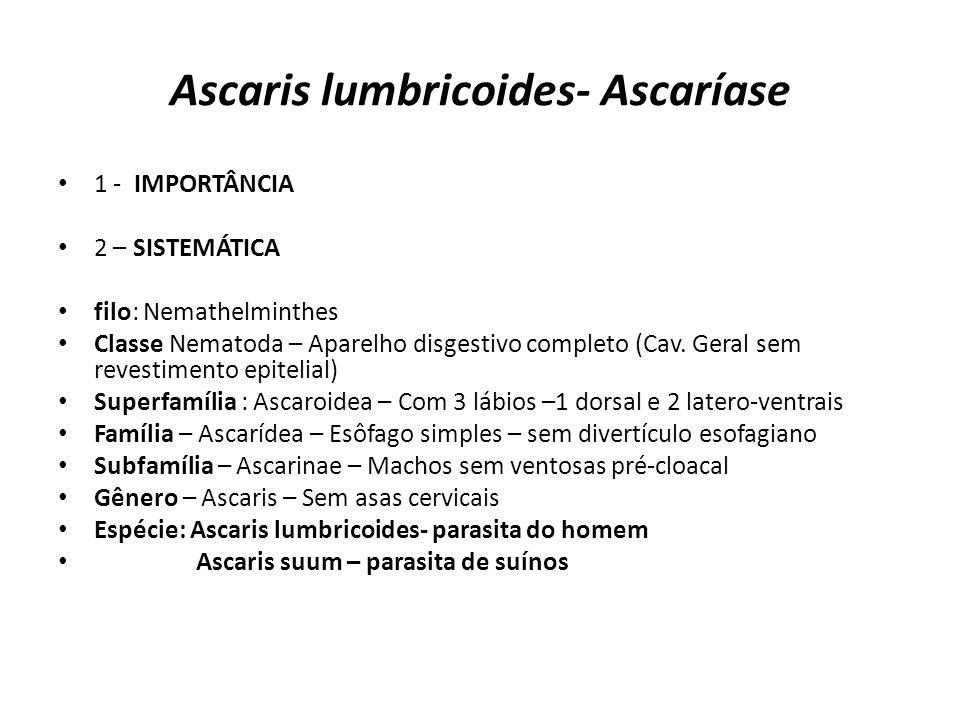 Ascaris lumbricoides- Ascaríase