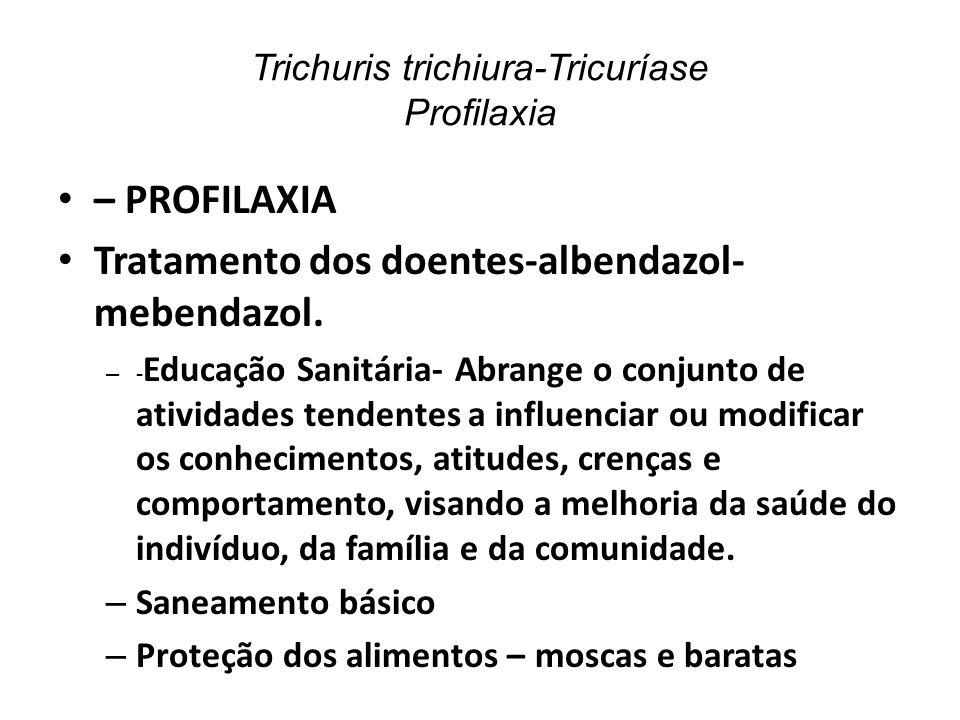 Trichuris trichiura-Tricuríase Profilaxia