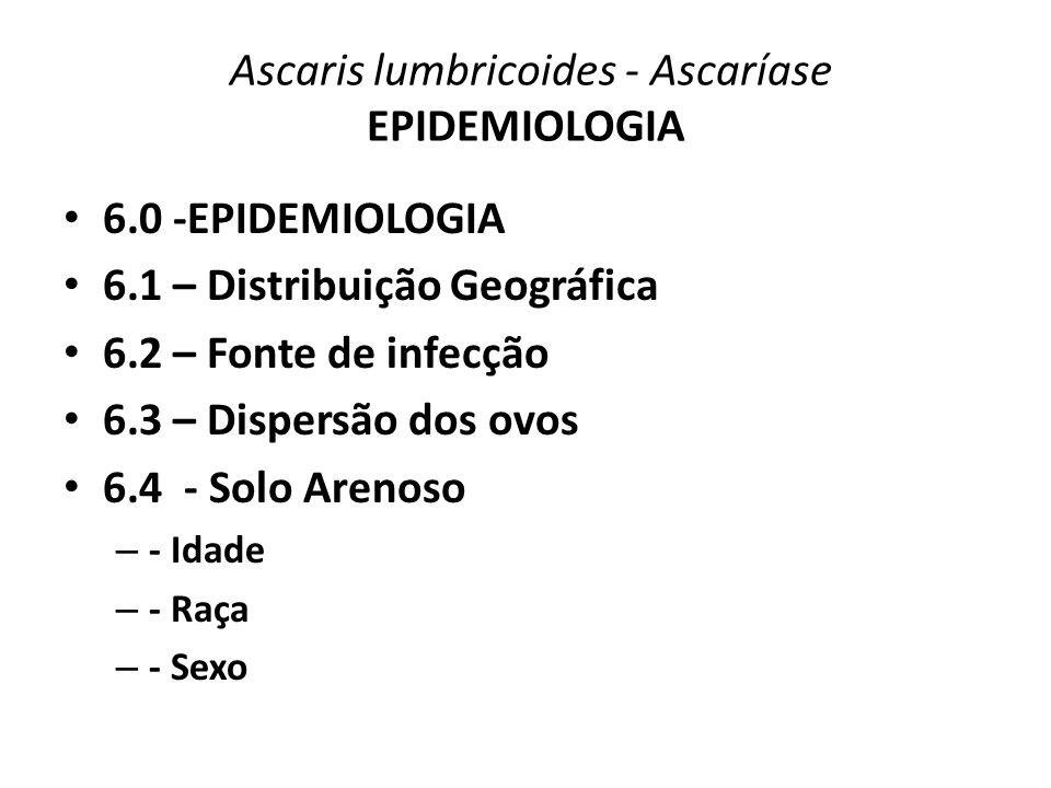Ascaris lumbricoides - Ascaríase EPIDEMIOLOGIA