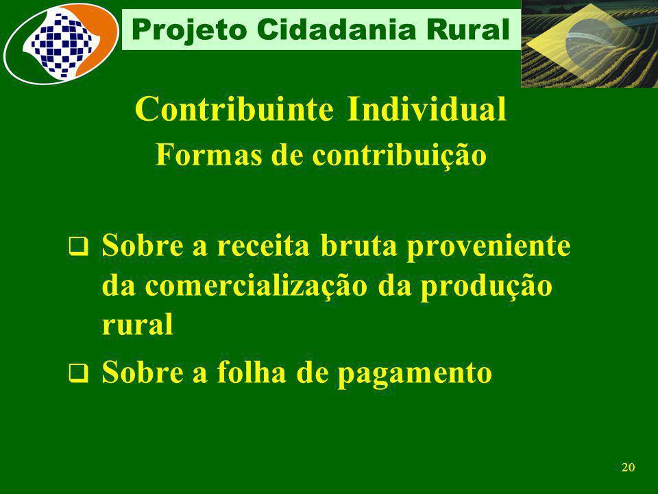 Contribuinte Individual Formas de contribuição