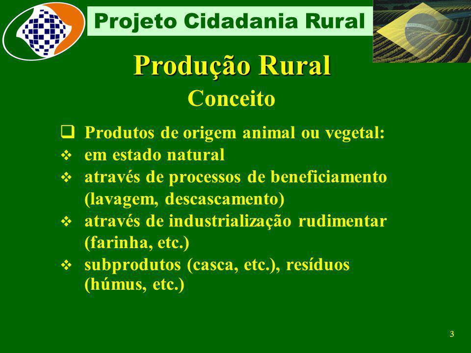 Produção Rural Conceito Produtos de origem animal ou vegetal: