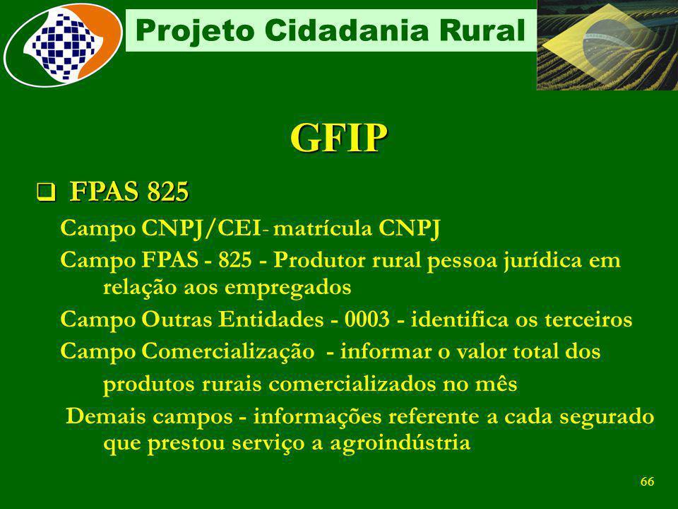 GFIP FPAS 825 Campo CNPJ/CEI- matrícula CNPJ