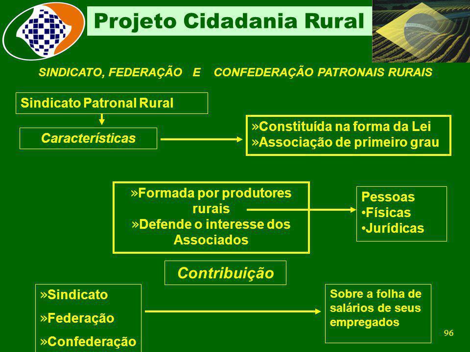 Contribuição Sindicato Patronal Rural Constituída na forma da Lei