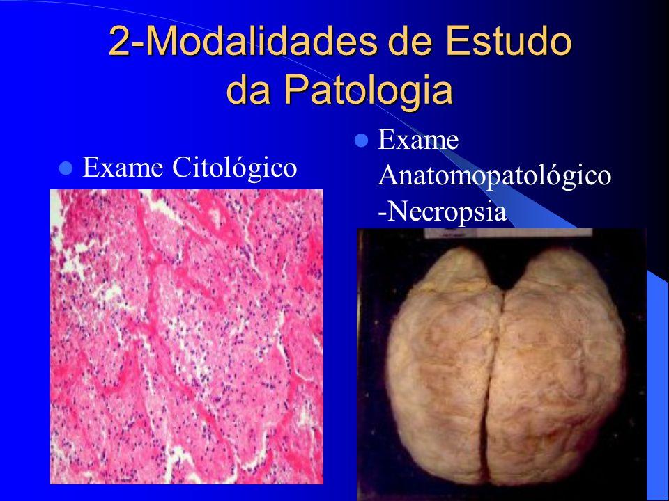 2-Modalidades de Estudo da Patologia