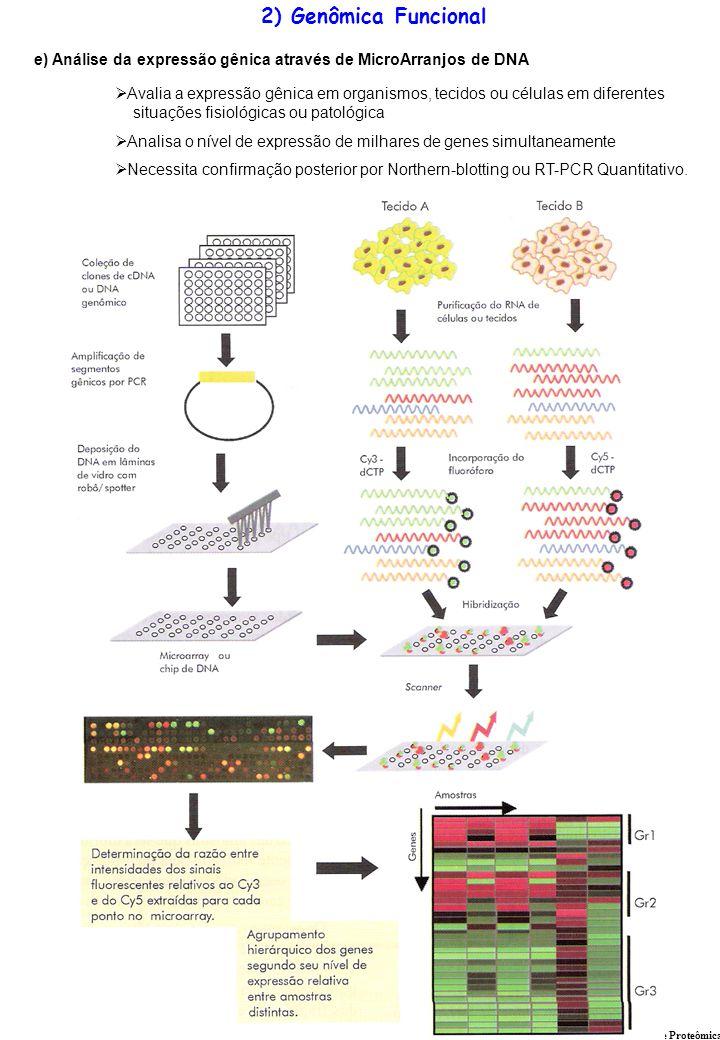 e) Análise da expressão gênica através de MicroArranjos de DNA