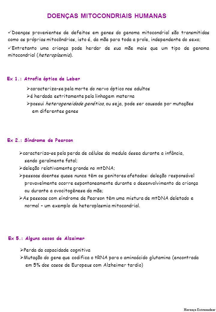 DOENÇAS MITOCONDRIAIS HUMANAS