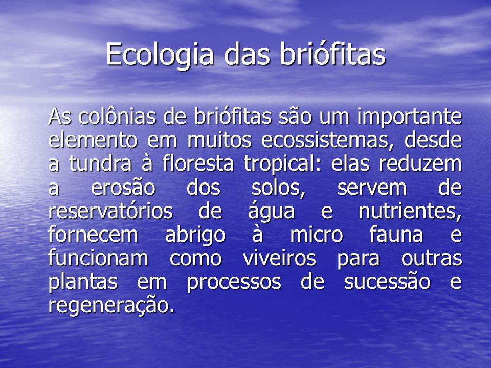 Ecologia das briófitas