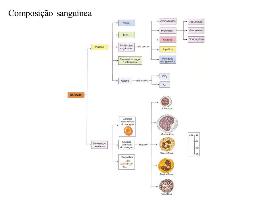 Composição sanguínea