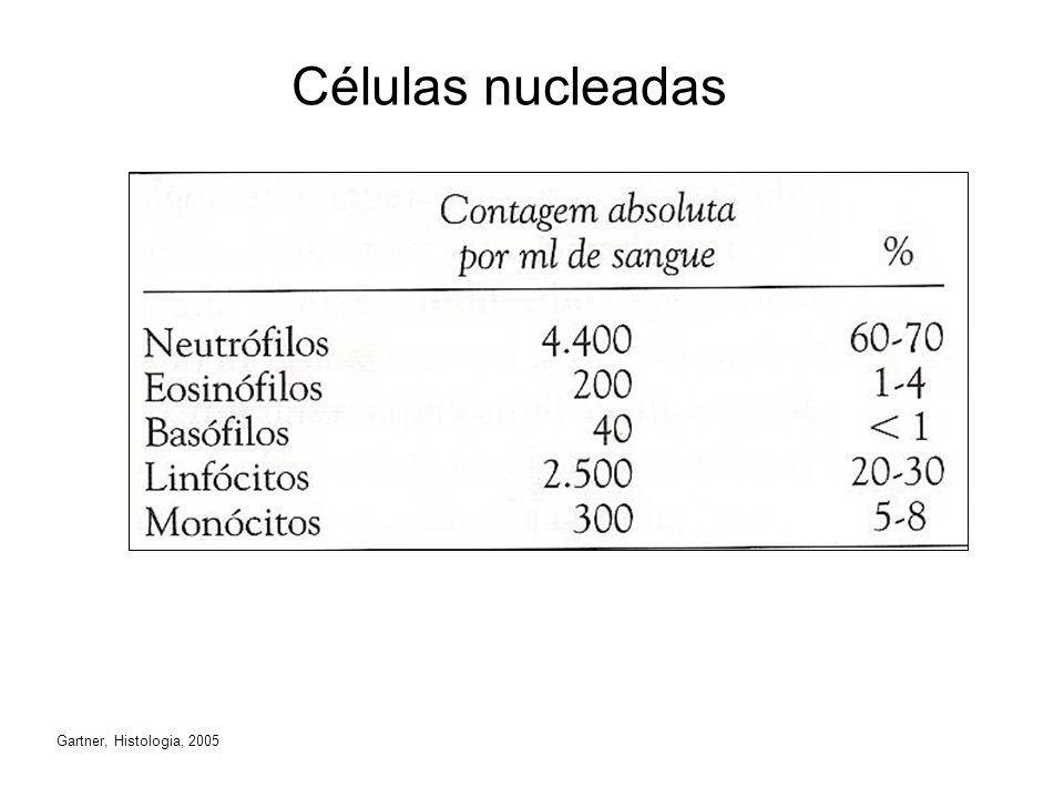 Células nucleadas Gartner, Histologia, 2005