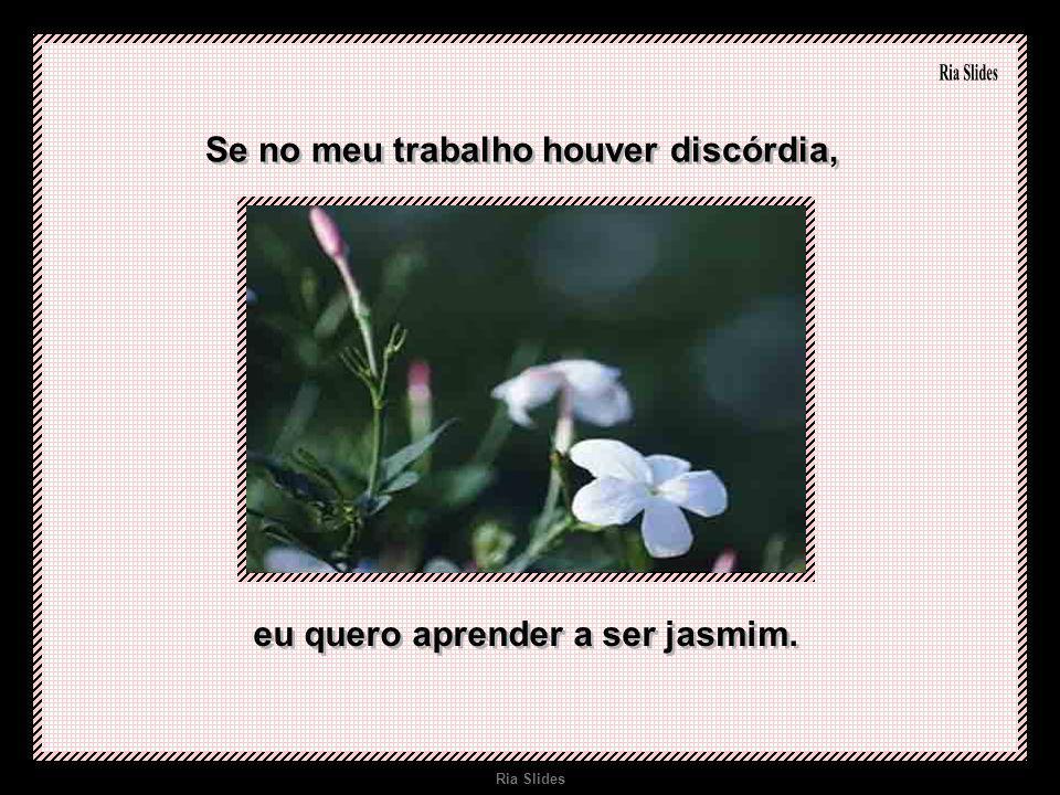Se no meu trabalho houver discórdia, eu quero aprender a ser jasmim.