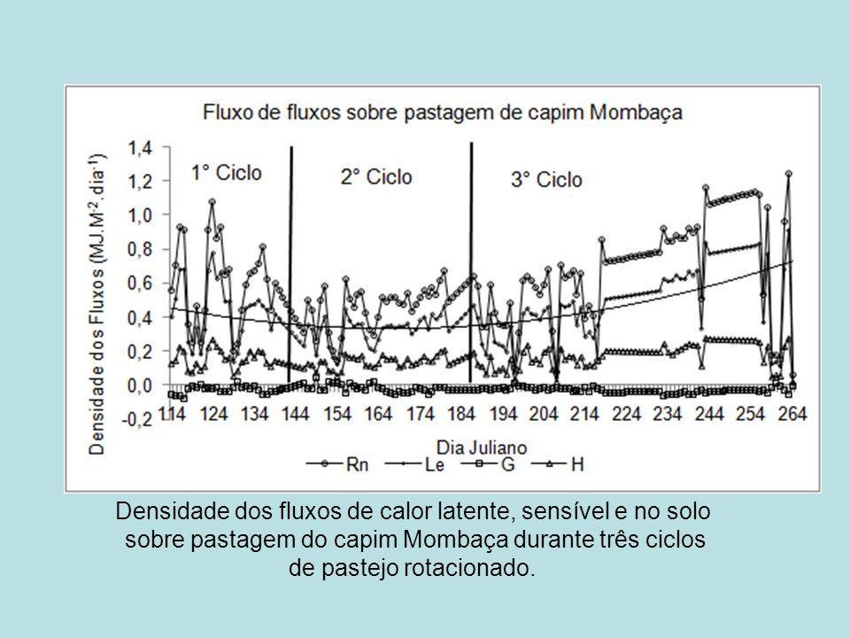 Densidade dos fluxos de calor latente, sensível e no solo