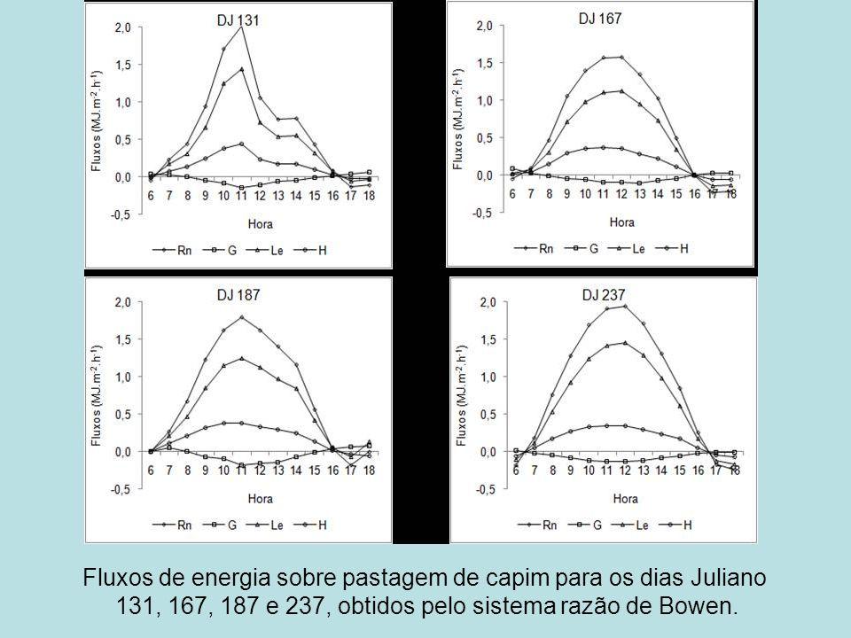 Fluxos de energia sobre pastagem de capim para os dias Juliano