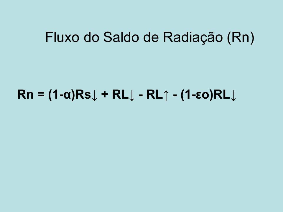 Fluxo do Saldo de Radiação (Rn)