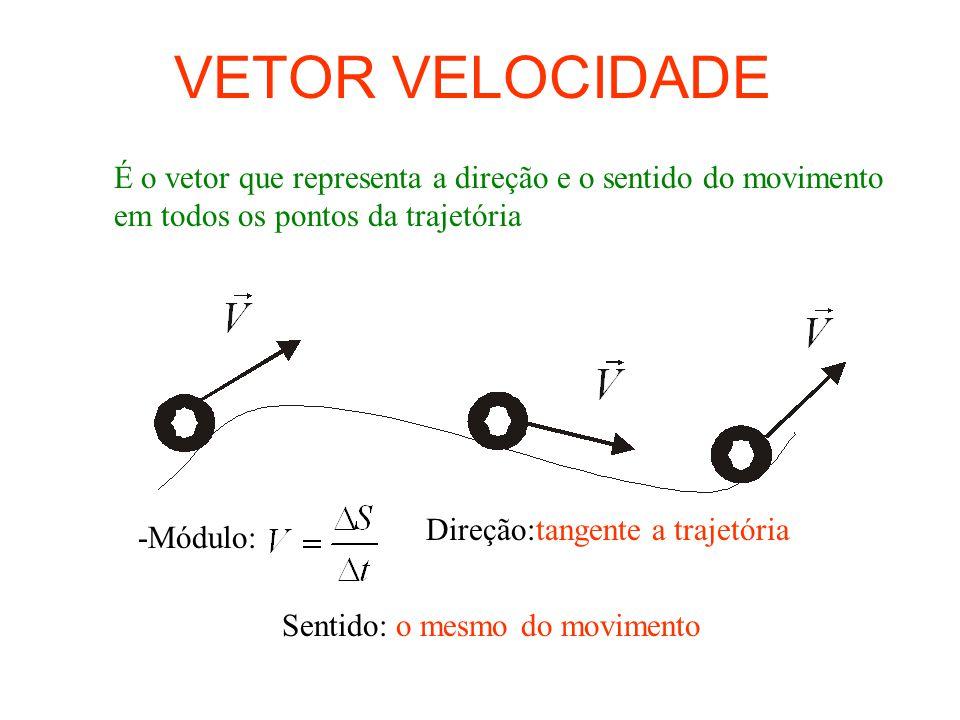 VETOR VELOCIDADE É o vetor que representa a direção e o sentido do movimento em todos os pontos da trajetória.