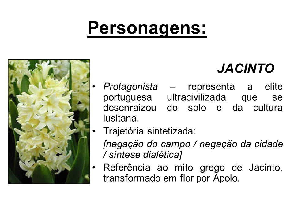 Personagens: JACINTO. Protagonista – representa a elite portuguesa ultracivilizada que se desenraizou do solo e da cultura lusitana.