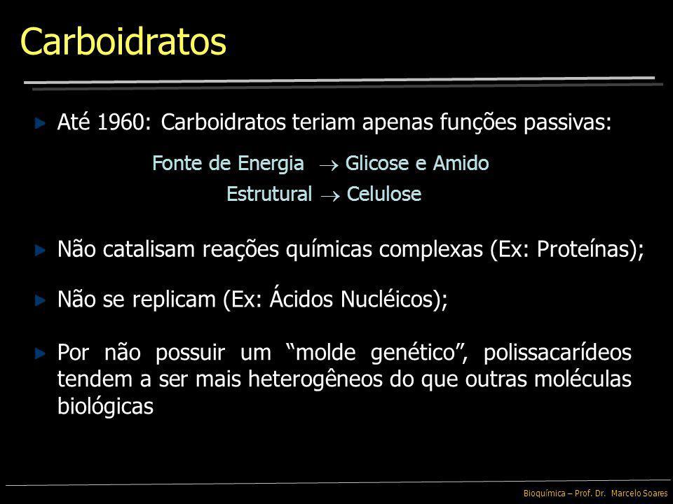 Carboidratos Até 1960: Carboidratos teriam apenas funções passivas: