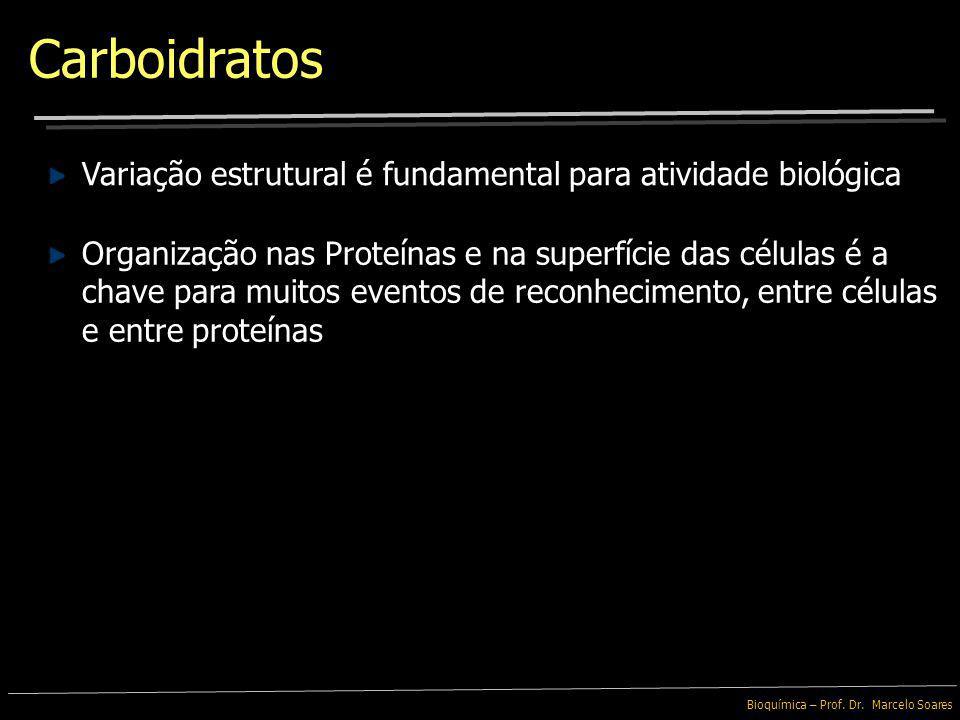 Carboidratos Variação estrutural é fundamental para atividade biológica.