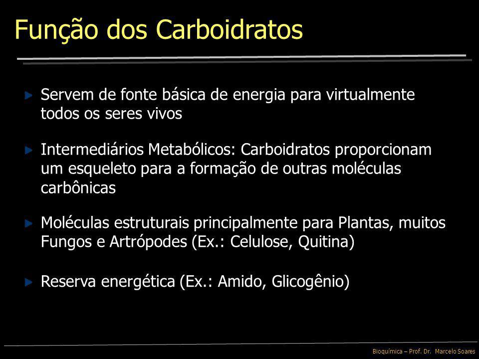 Função dos Carboidratos