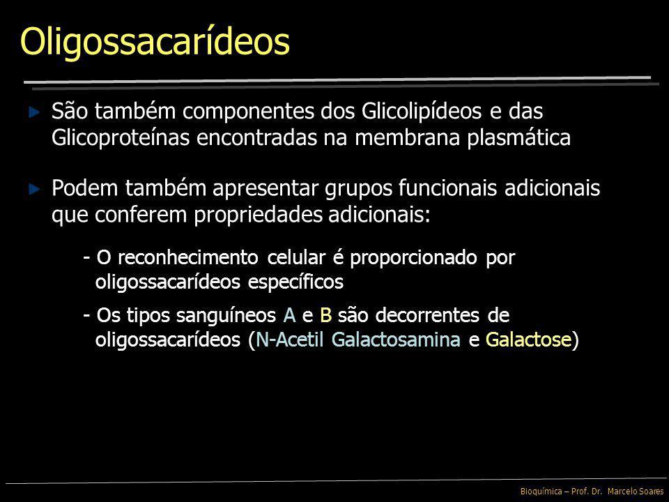 Oligossacarídeos São também componentes dos Glicolipídeos e das Glicoproteínas encontradas na membrana plasmática.