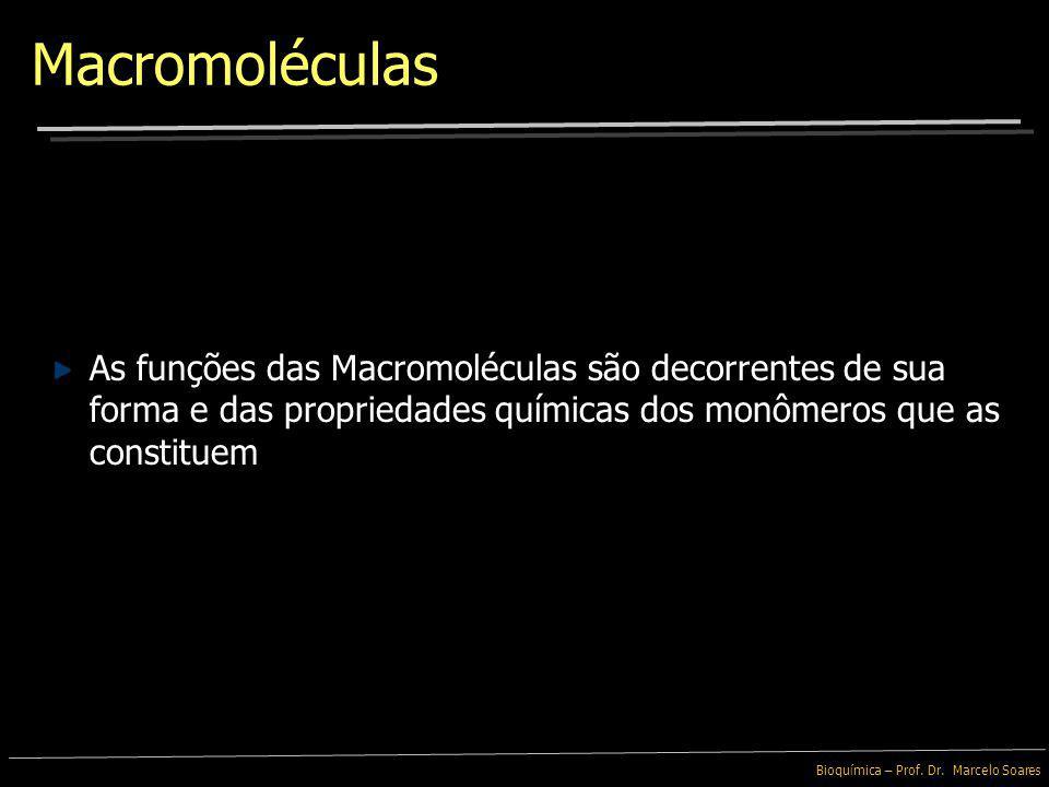 Macromoléculas As funções das Macromoléculas são decorrentes de sua forma e das propriedades químicas dos monômeros que as constituem.