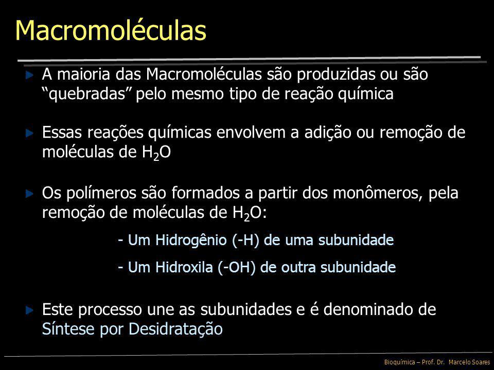 Macromoléculas A maioria das Macromoléculas são produzidas ou são quebradas pelo mesmo tipo de reação química.