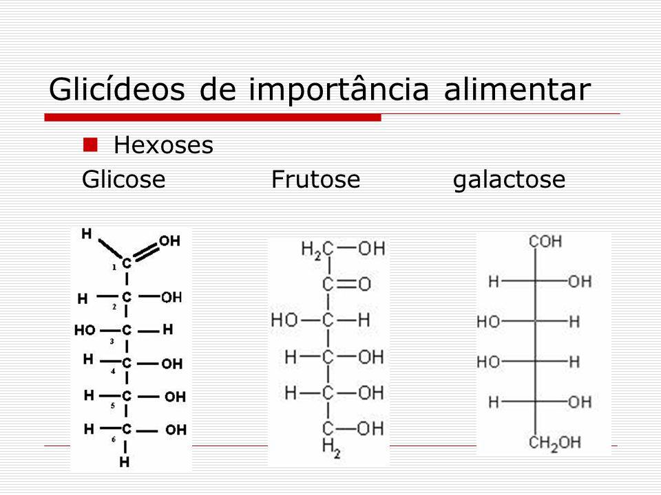Glicídeos de importância alimentar