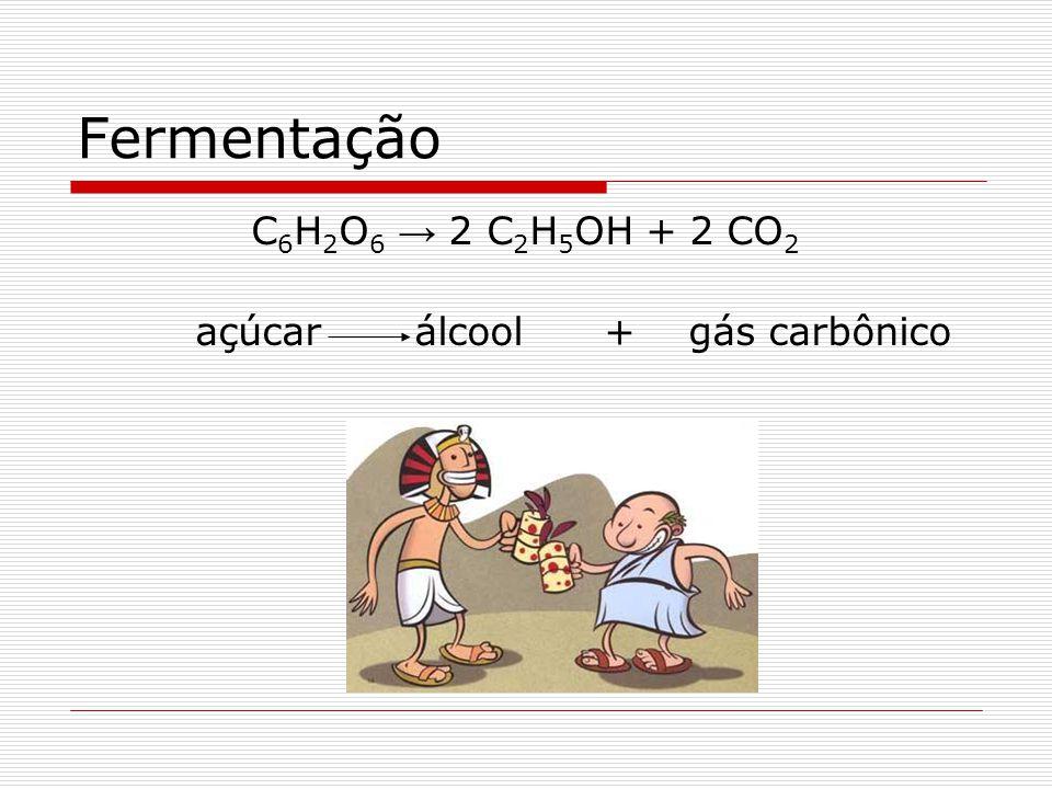 Fermentação C6H2O6 → 2 C2H5OH + 2 CO2 açúcar álcool + gás carbônico
