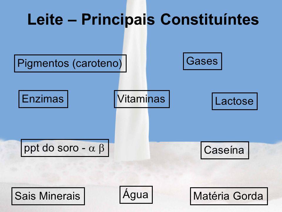 Leite – Principais Constituíntes