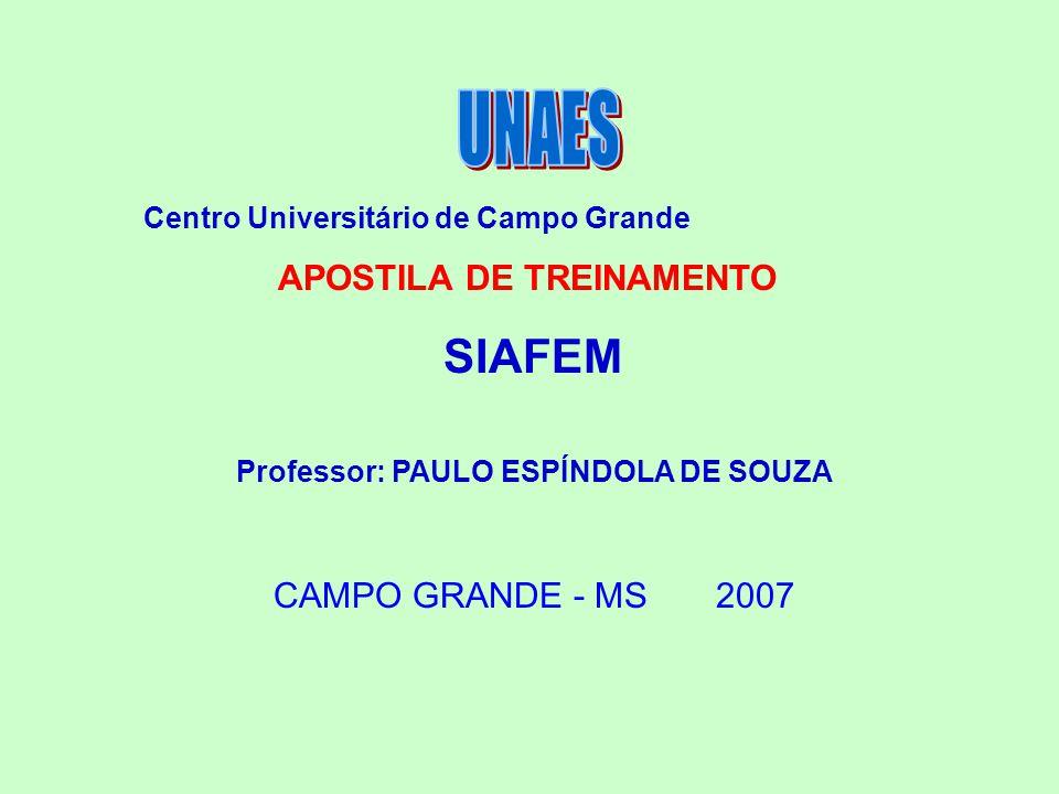 Professor: PAULO ESPÍNDOLA DE SOUZA
