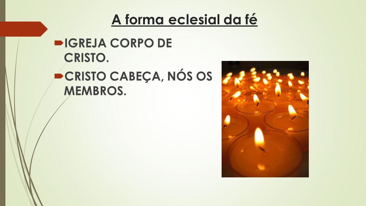A forma eclesial da fé IGREJA CORPO DE CRISTO.