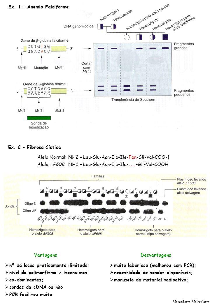 Cascatas de regulação da expressão gênica