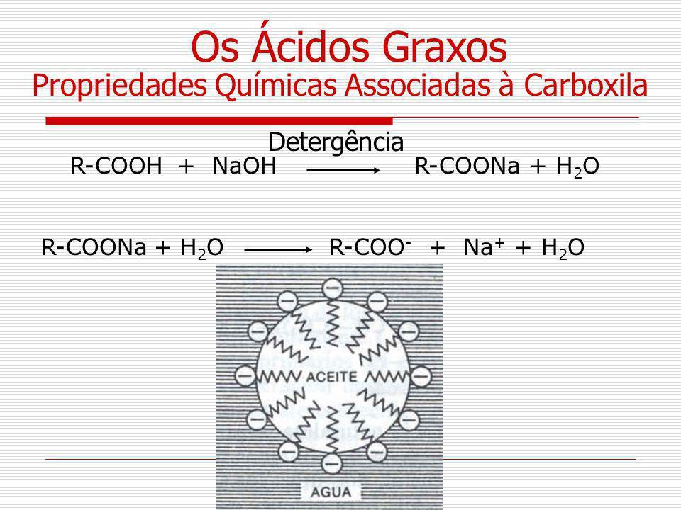 Os Ácidos Graxos Propriedades Químicas Associadas à Carboxila