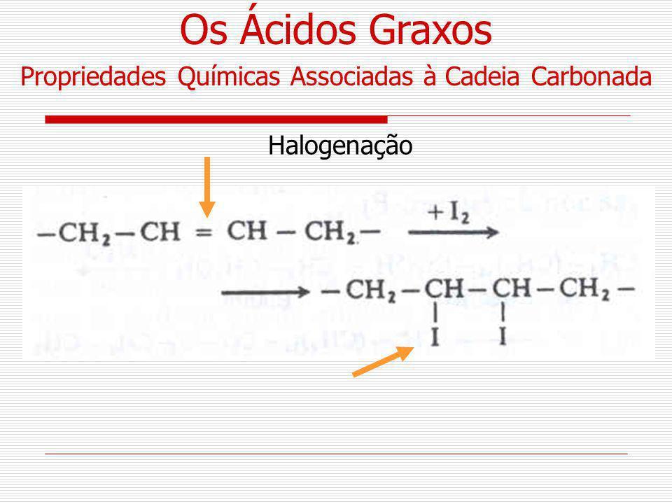 Propriedades Químicas Associadas à Cadeia Carbonada