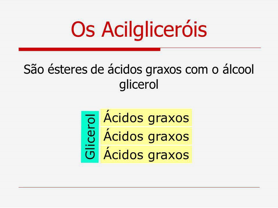 São ésteres de ácidos graxos com o álcool glicerol