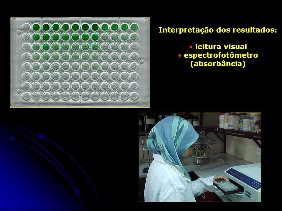 Interpretação dos resultados: espectrofotômetro (absorbância)