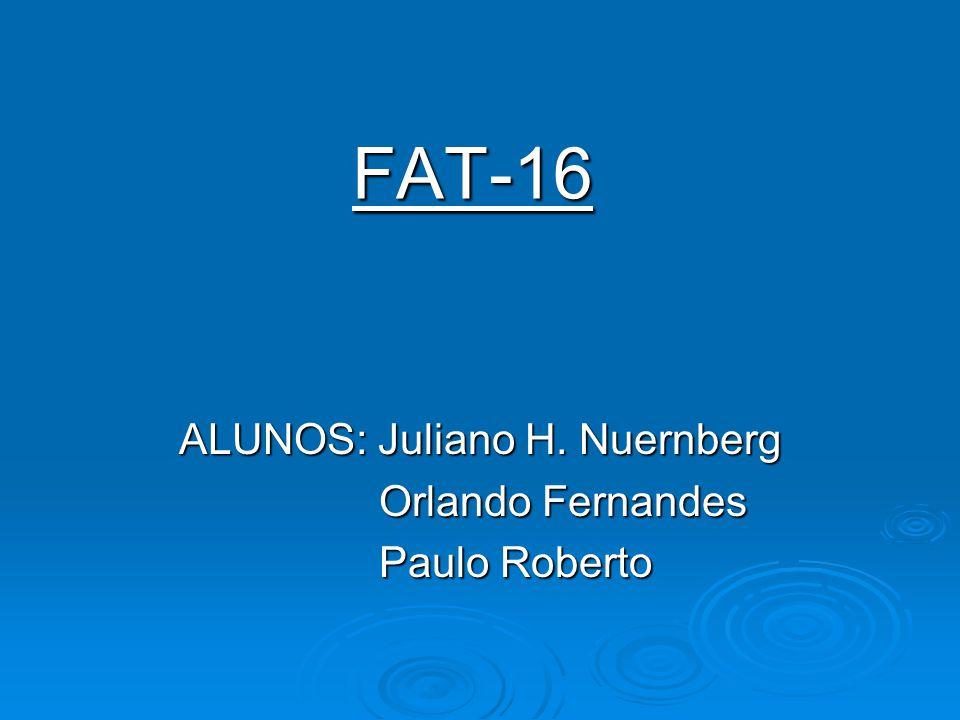 ALUNOS: Juliano H. Nuernberg Orlando Fernandes Paulo Roberto