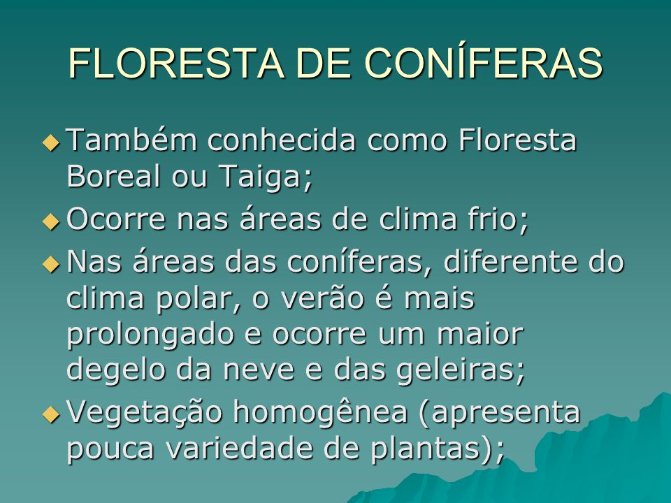 FLORESTA DE CONÍFERAS Também conhecida como Floresta Boreal ou Taiga;