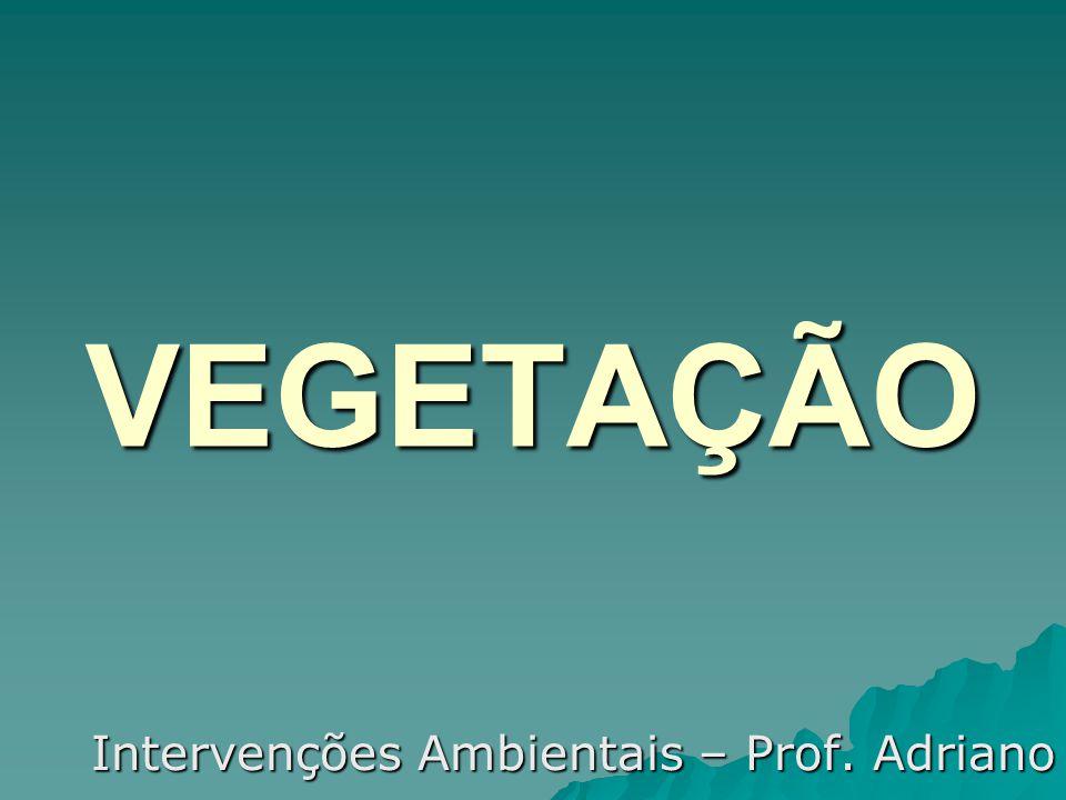 Intervenções Ambientais – Prof. Adriano