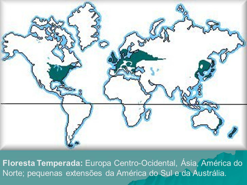 Floresta Temperada: Europa Centro-Ocidental, Ásia, América do Norte; pequenas extensões da América do Sul e da Austrália.