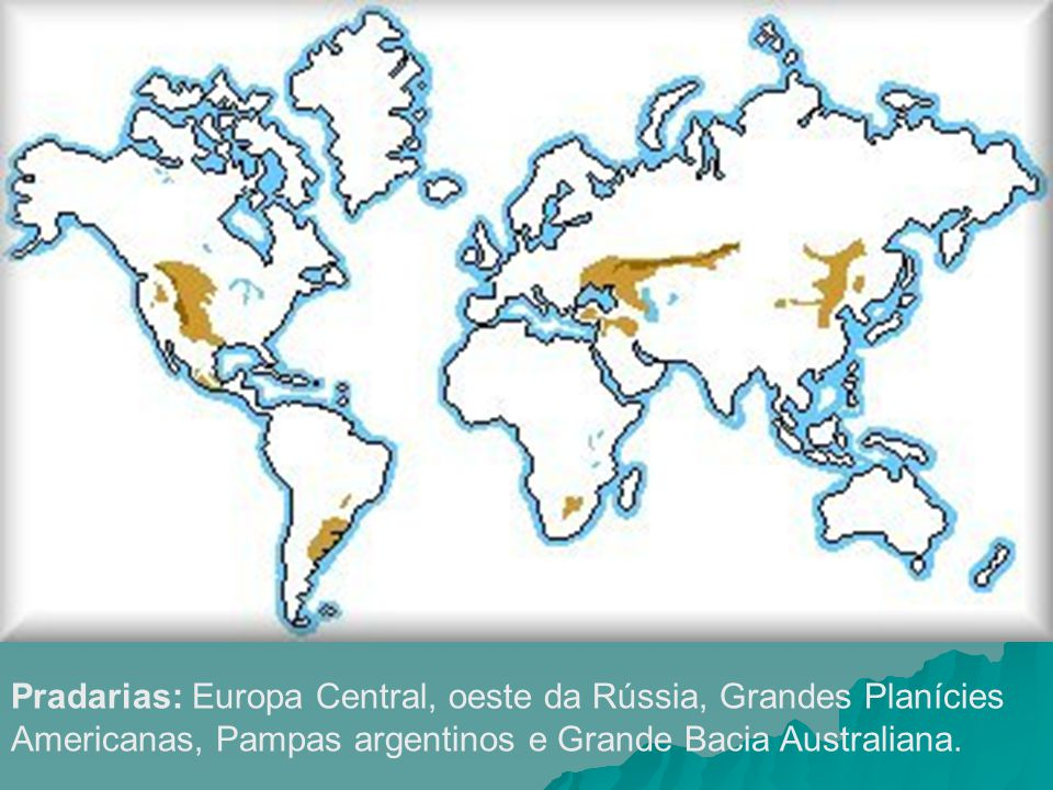 Pradarias: Europa Central, oeste da Rússia, Grandes Planícies Americanas, Pampas argentinos e Grande Bacia Australiana.