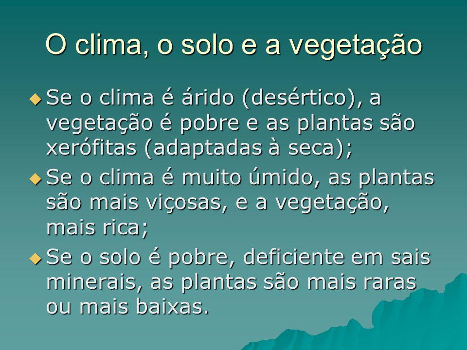 O clima, o solo e a vegetação