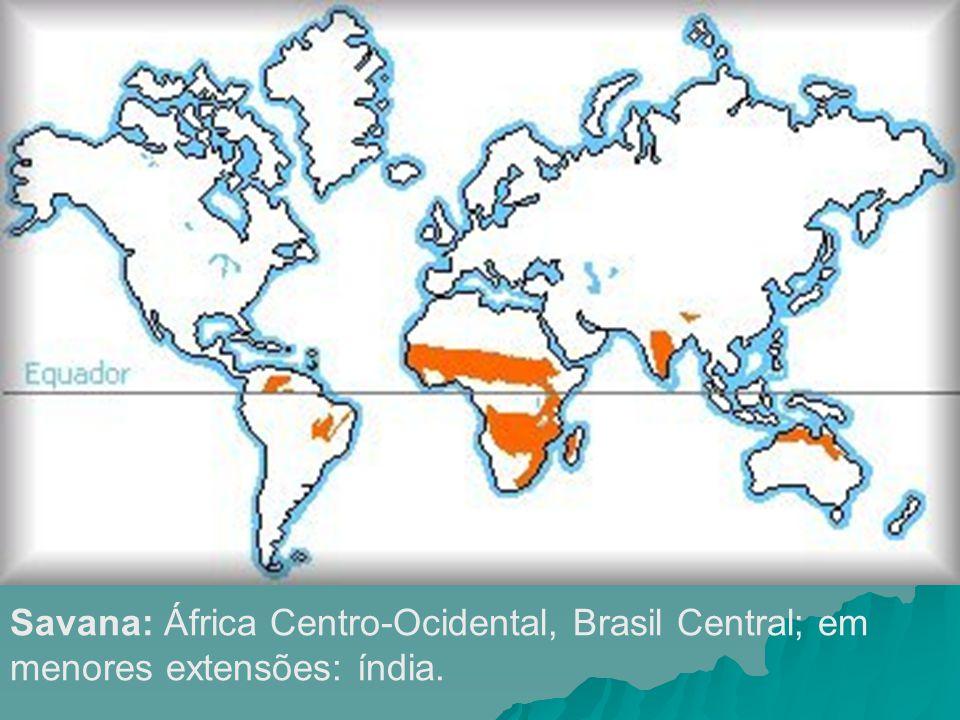 Savana: África Centro-Ocidental, Brasil Central; em menores extensões: índia.