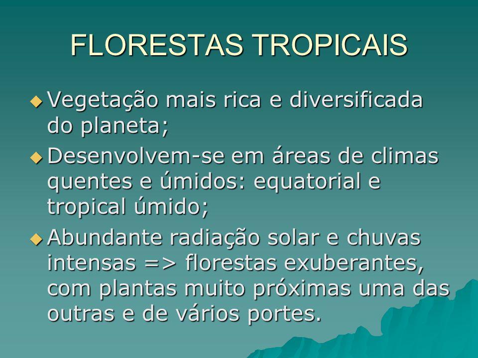 FLORESTAS TROPICAIS Vegetação mais rica e diversificada do planeta;