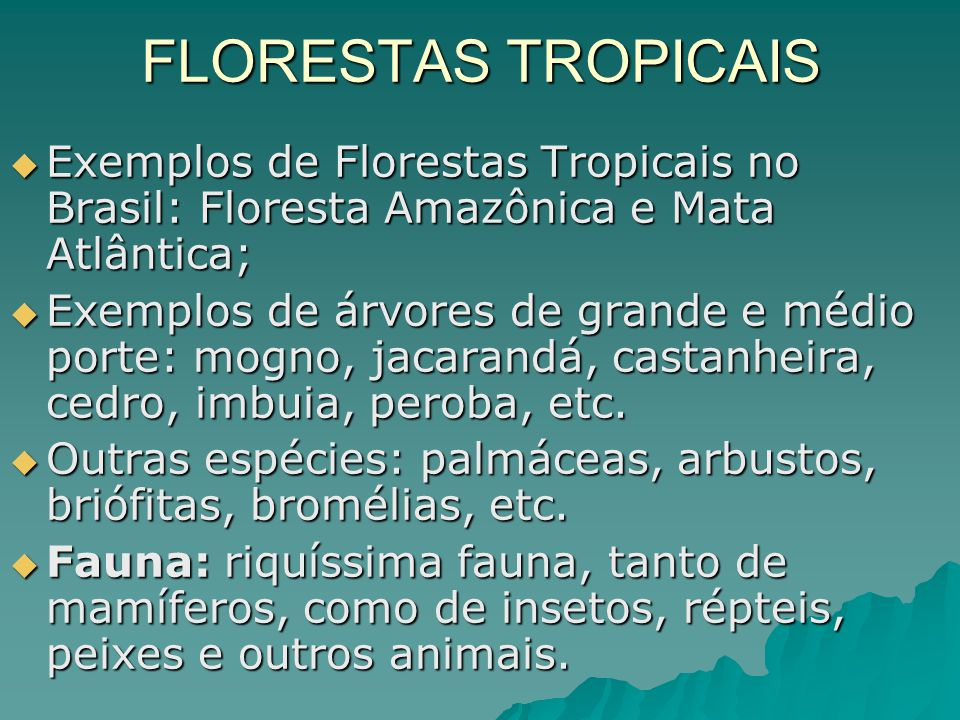 FLORESTAS TROPICAIS Exemplos de Florestas Tropicais no Brasil: Floresta Amazônica e Mata Atlântica;